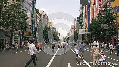 Pedestrian Akihabara, Tokyo Editorial Stock Image