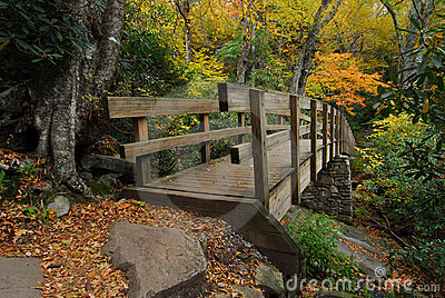 Pedestrian Bridge in Autumn Mountains