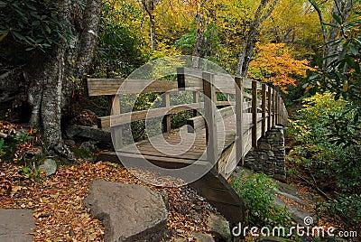 Pedestrian Bridge in Autumn Mountains
