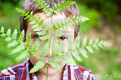 Peeking through a leaf