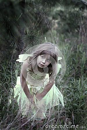 Peeking in the woods