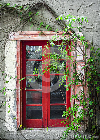 Peeling Red Door & Green Vines