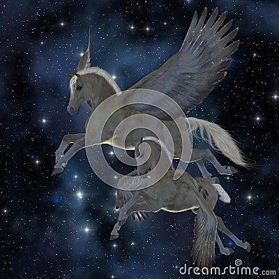 Pegasus 04