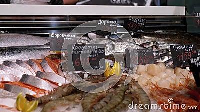 Peixes do Mar Fresco no Gelo com Etiquetas de Preço são vendidos na janela da Loja video estoque