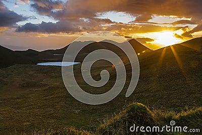 Peixinho Sunrise