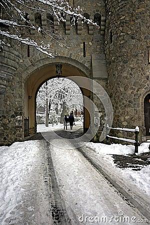 Peles Castle Editorial Photo