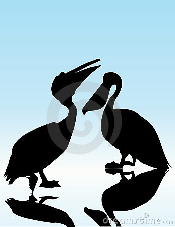 Free Pelican Royalty Free Stock Image - 4534496