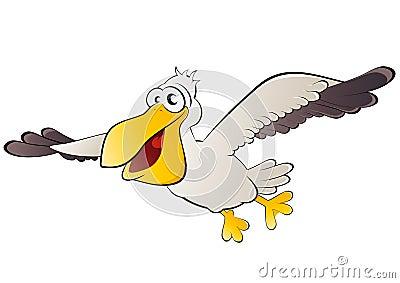 Pelican bird in flight