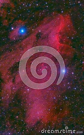 Pelican Nebula in cygnus