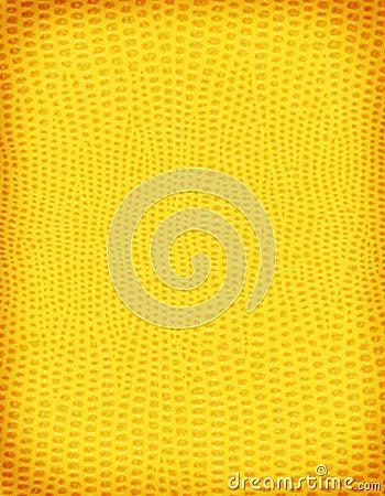 Pelle gialla della lucertola