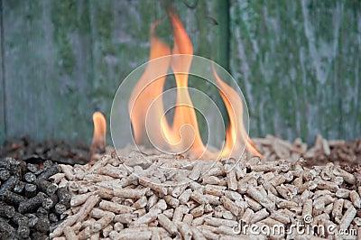 Pelllets- biomass