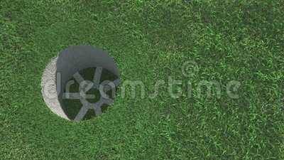 Pelota de golf en la hierba