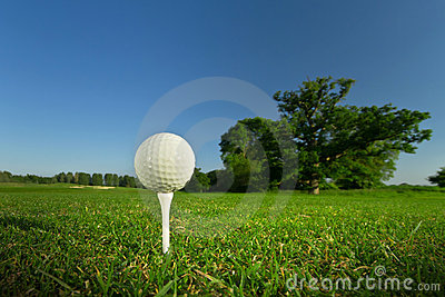 Pelota de golf en la te