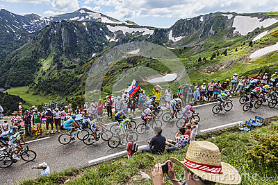 The Peloton in Pyrenees Editorial Photography