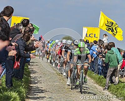 Pelotonen Paris Roubaix 2014 Redaktionell Foto