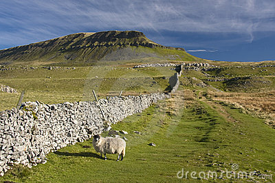 Pen Y Ghent hill , Yorkshire Dales , UK