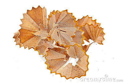 Pencil Shavings Isolated on