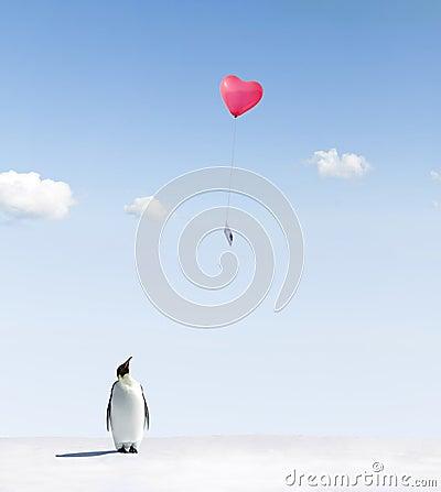 Penguin getting love letter