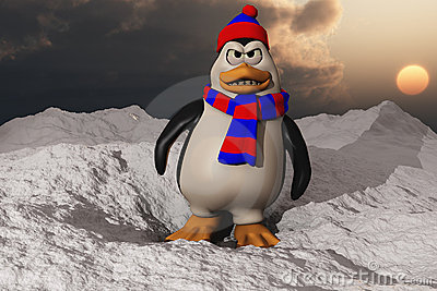 A Penguin Looking Angry In Snow