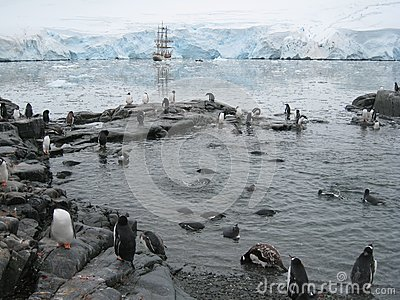 Penguin pool at Port Lockroy