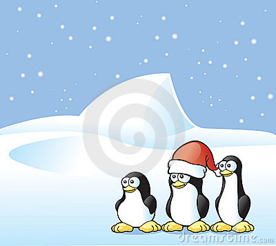 Penguin Postcard Stock Photo - Image: 12397710