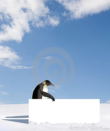 Free Penguin With Blank Sign Royalty Free Stock Image - 10138036