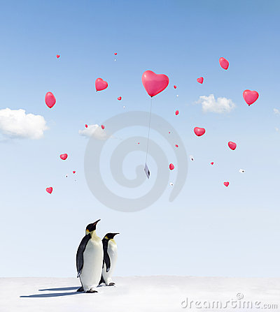 Free Penguins And Balloons Stock Photography - 19081542
