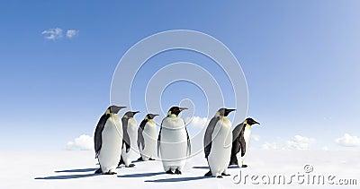 Penguins on icy landscape