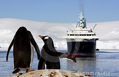 Penguins looking at a boat
