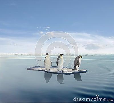 Penguins on melting iceberg Stock Photo