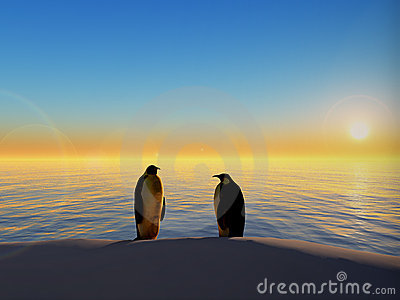 Penguins by ocean sunset