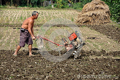 Pengzhou, China: Farmer Plowing Field Editorial Photography