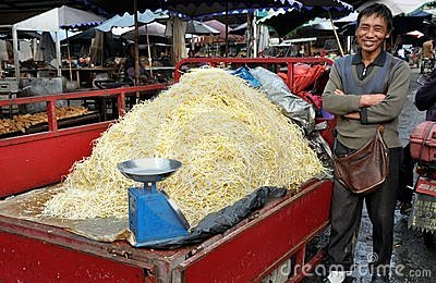 Pengzhou, China: Farmer Selling Bean Sprouts Stock Photography - Image: 15063302