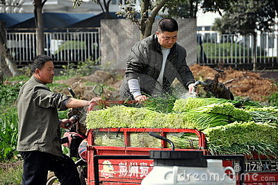 Pengzhou, China: Farmers Washing Garlic Editorial Photo