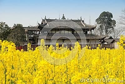 Pengzhou, China: Jing Tu Buddhist Temple