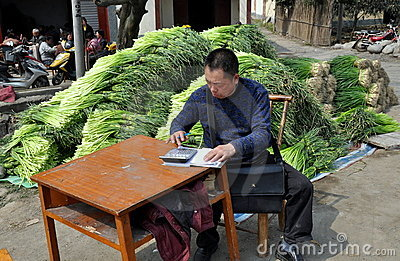 Pengzhou, China: Man Using Calculator Editorial Stock Photo