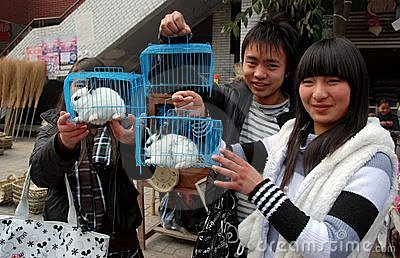 Pengzhou, China: Teens Selling Caged Rabbits Editorial Photography