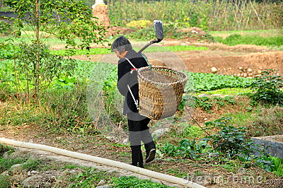 Pengzhou, China: Woman in Field with Shovel and Basket Editorial Stock Photo