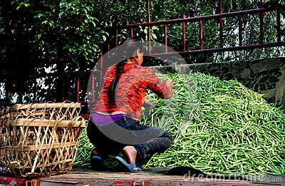 Pengzhou, China: Woman on Truck with Green Beans