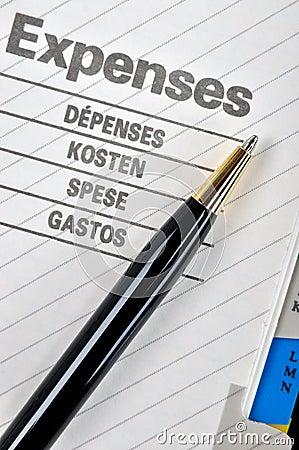 Penna di sfera alla pagina di spese
