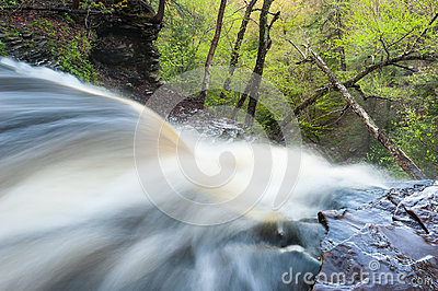 Pennsylvania Ricketts Glen Waterfall Spring Scenic