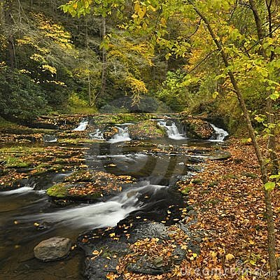 Pennsylvania Stream In Autumn