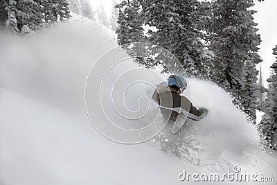 Pensionante #2 della neve delle donne nell azione