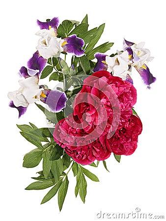 Free Peones And Iris Royalty Free Stock Photo - 44417615