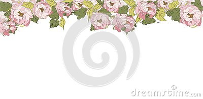 Peony Banner, vector illustration flower pink texture Cartoon Illustration