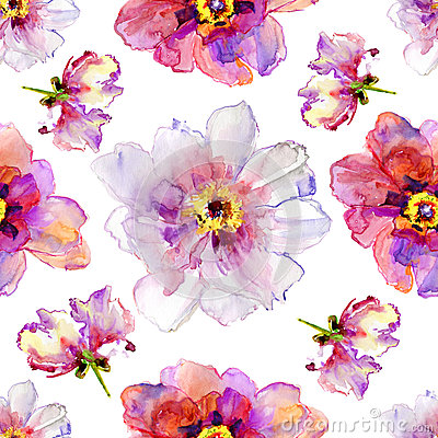 Free Peony Flowers. Watercolor Illustration. Royalty Free Stock Image - 31350496