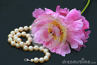 Peony rose and pearl necklace