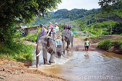 People on the elephant trekking in Thailand Editorial Photo