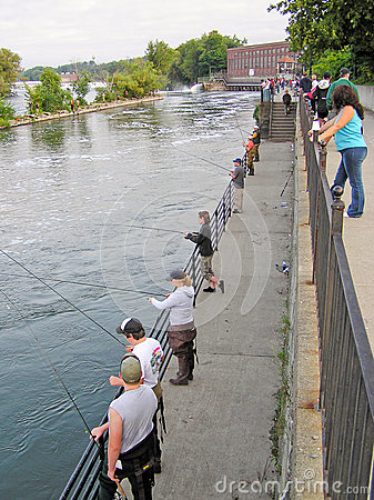 People fishing for salmon in the oswego river editorial for Fishing kings free