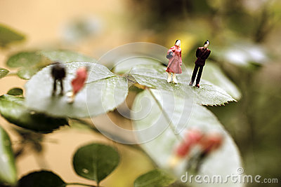 People on a leaf